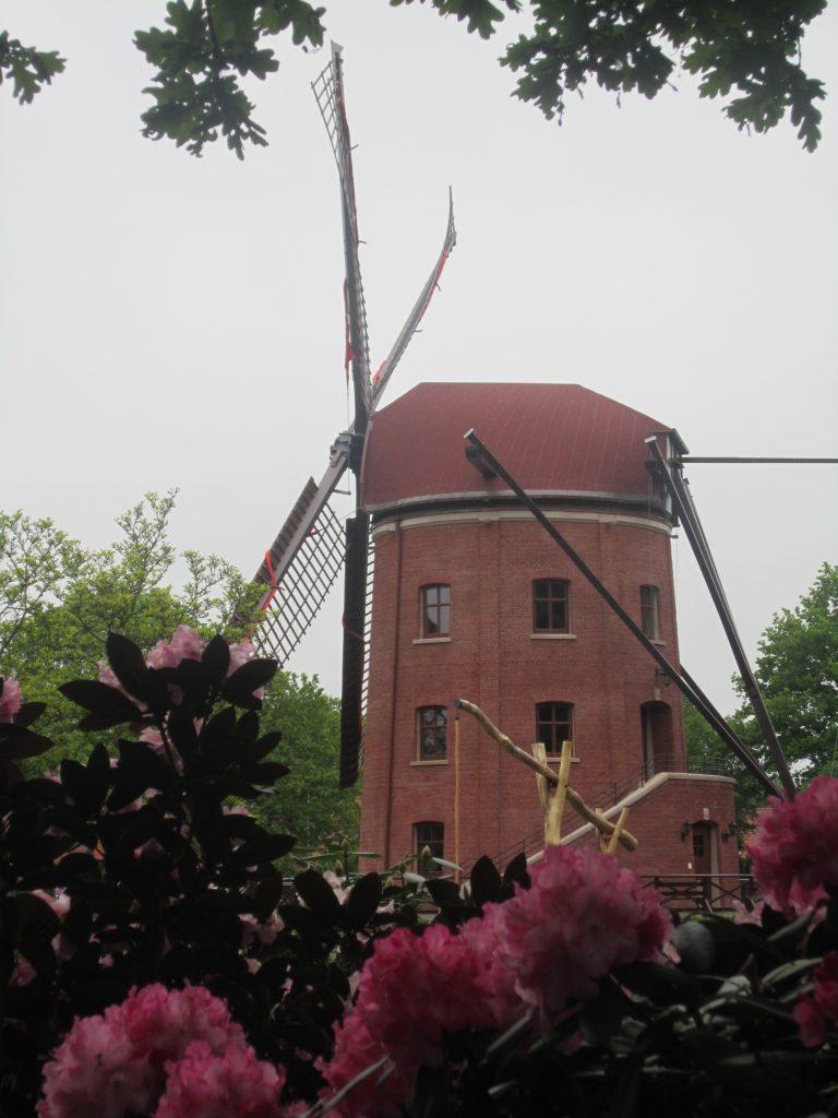 Von der Ferienwohnung zur Rügenwalder Mühle